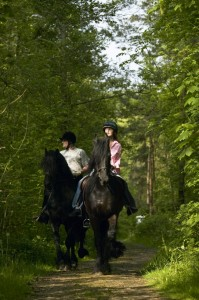 Horse back riding in Ireland